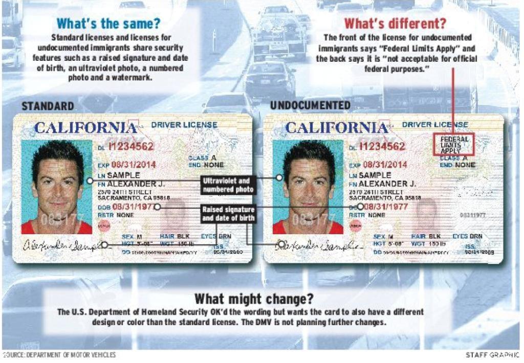 Illegal Immigrant license